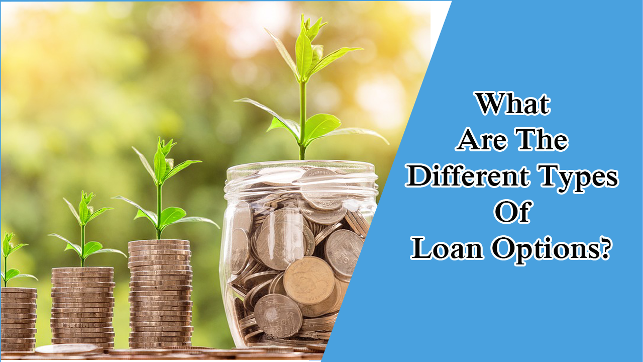 What Are The Different Types Of Loan Options