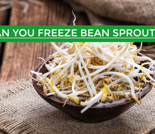 can you freeze bean sprouts
