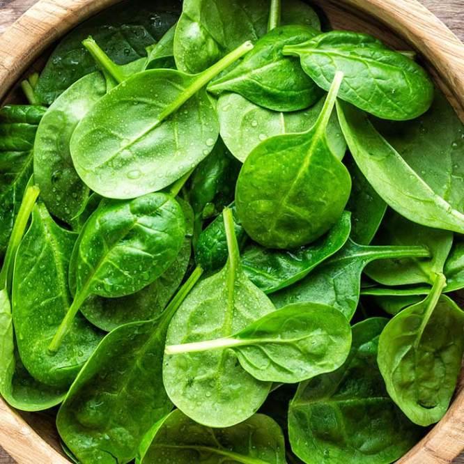 zdravlje proteini spanac
