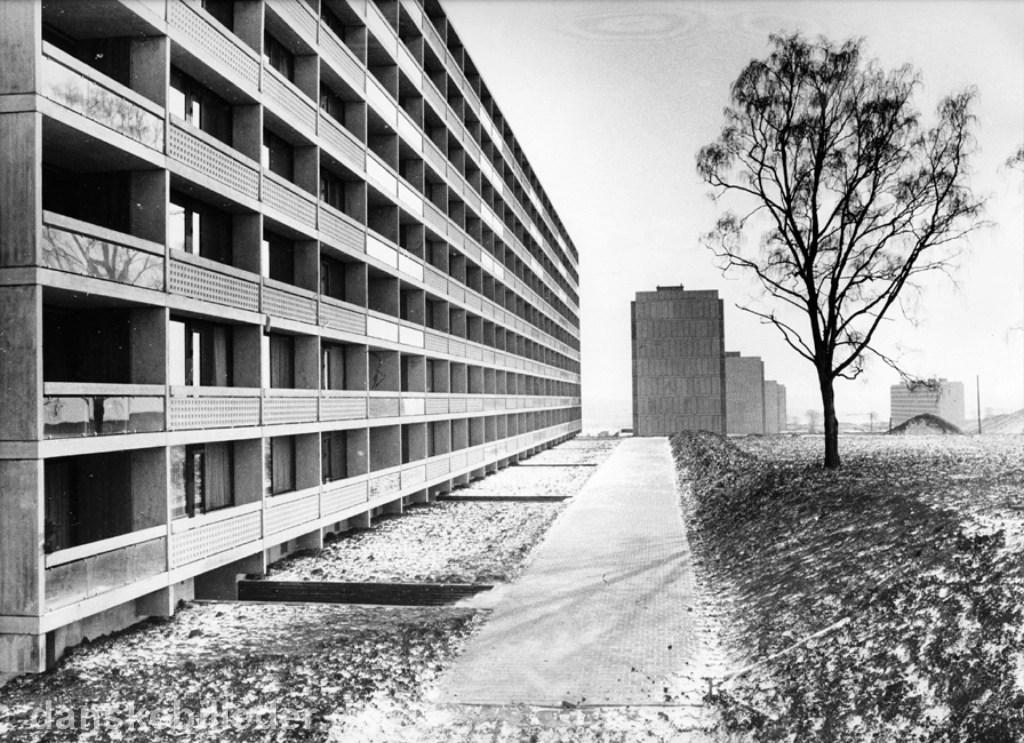 Hvad kan vi lære af 'betonjunglens' historie? 2.del