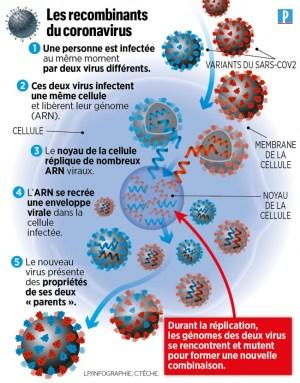 Comprendre l'arnaque : champions du monde de la vaccination, les Chiliens se font reconfiner