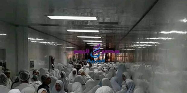 بالصور والفيديو مظاهرات حاشدة لعمال الانتاج بشركة ايبيكو بالعاشر من رمضان |