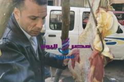 شبح المجازر يقود حملة علي الاسواق بسوهاج