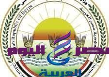 وزارة الزراعة السيطرة على مرض الحمى القُلاعية فى مصر | وزارة الزراعة