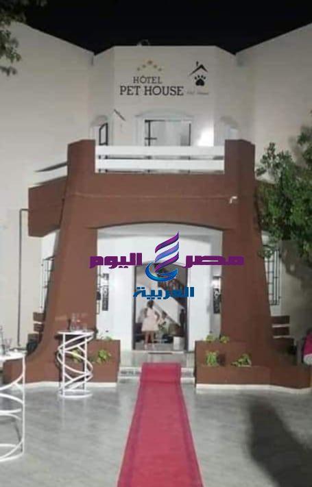 افتتاح أول نزل للحيوانات في تونس