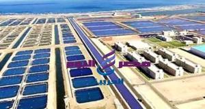 """6 معلومات عن مشروع الإستزراع السمكي """"الفيروز"""" الذي أفتتحه السيد الرئيس بشرق بورسعيد اليوم"""