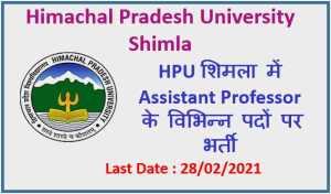 HPU Shimla Recruitment 2021 : Apply Now