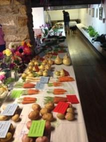 Symondsbury Produce