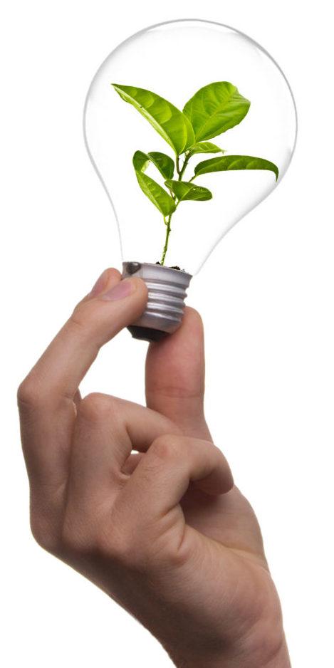 eco green sustainable lighting