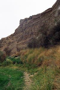 驟眼看似岩石,其實是鬆軟的沙丘。