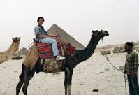 騎駱駝遊金字塔。