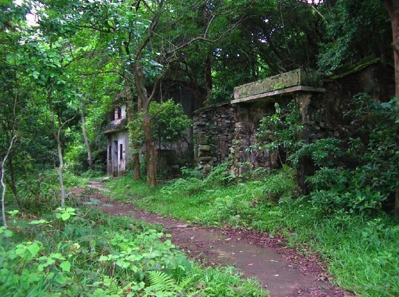 步入樹林,途經一條荒廢村莊。