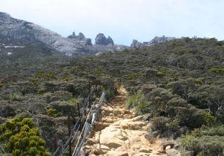 往神山的山徑。