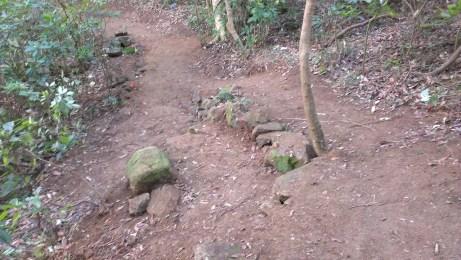 其中一個「二選一」路線:左路兩個大小 jump 位;右路斜路。