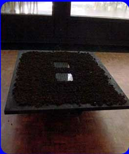 beginning,video sculpture, Jan 2002
