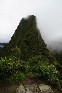 從 Una Picchu 看 Wayna Picchu,隱約看到登頂的山路。