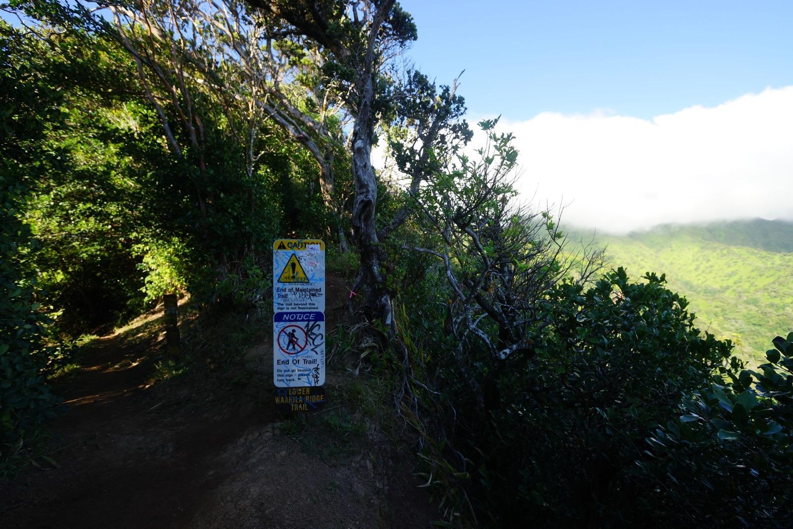 Wa'ahila Ridge Trail
