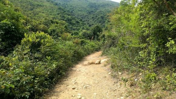 下山路段。
