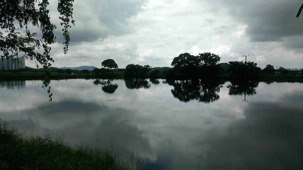 邊界路魚塘。