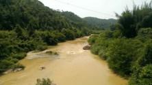 X155 旁邊的河流 -- 康禾水。