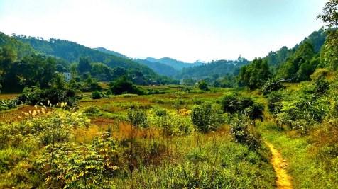 離開林場,是一片廣闊田野。