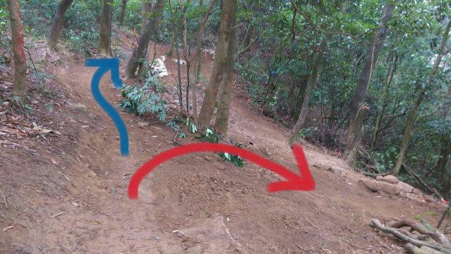 紅線是原本設計路線;藍線是新增路線。