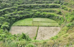 從 Google Earth 找到的照片,清楚看見「神秘圓形」。