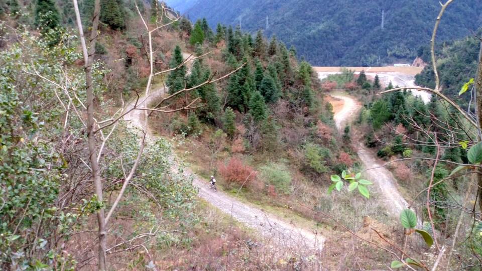 從延壽攀升至海拔 1041 米的磚頭坳。