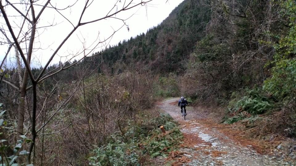 下坡 8 公里全是 XC 路。