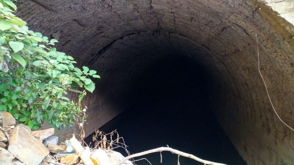 爬下樹霜頭隧道,裏面水浸,隱約可見百多米外的一端。