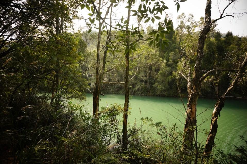 在湖畔小徑慢步。