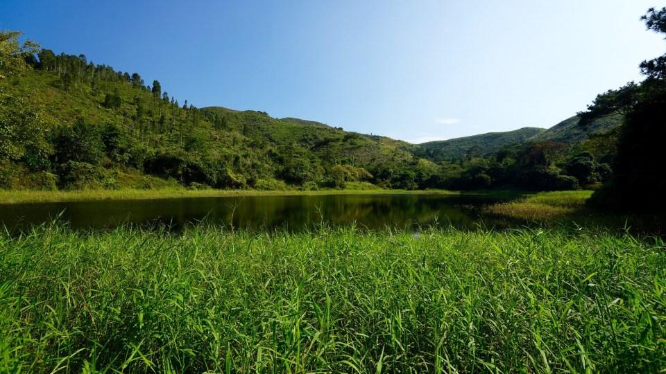 落馬洲灌溉水塘。