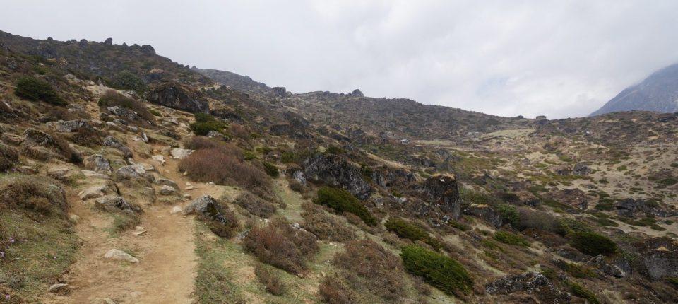 有點像麥理浩徑第八段的山徑,要靠疊石指路。