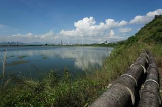 近岸是 T Park,遠處可見深圳灣大橋。
