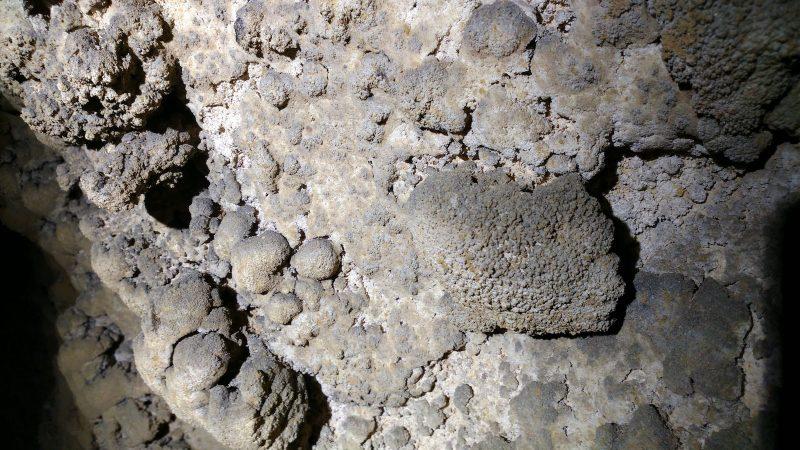 洞內各種沉積物