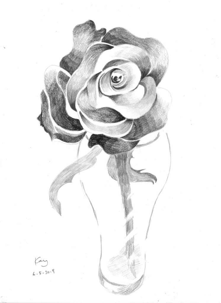 《玫瑰》(課堂示範)鉛筆 29.4cm x 38.5cm 6-5-2019