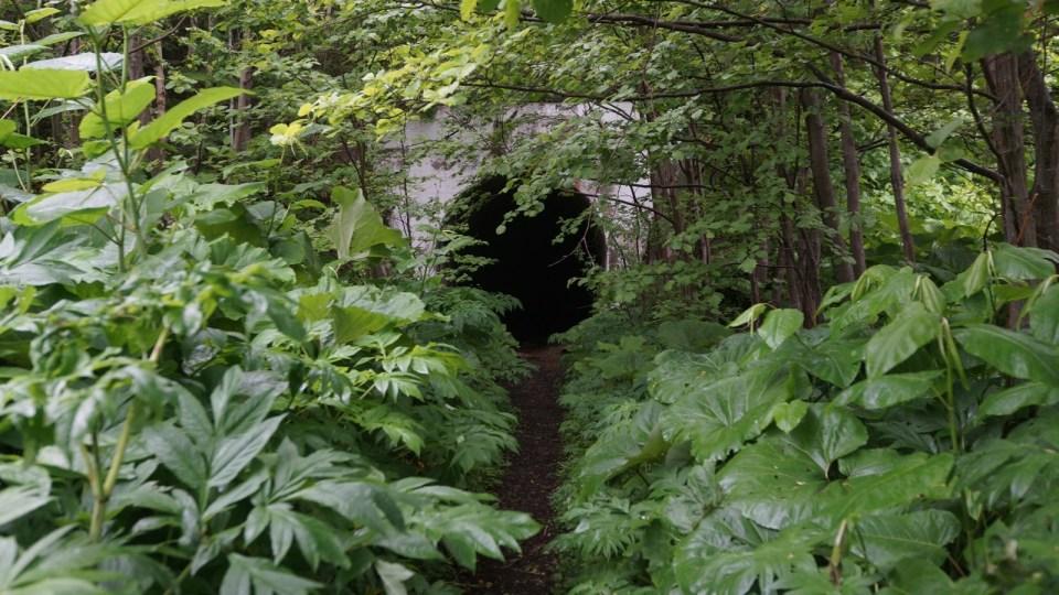 第二條隧道(約 250m)。