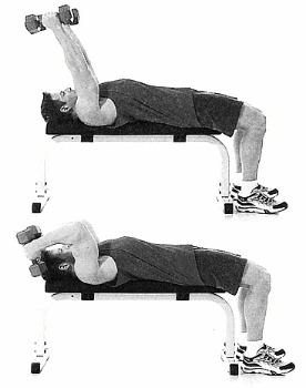 اقوى 20 تمرين لاستهداف ال3 رؤوس لعضلة الترايسبس Triceps