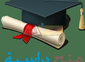 Photo of التعليم تعلن عن منح دراسية بالتعاون مع التعليم العالي والبحث العلمي