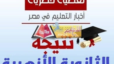 Photo of اعتماد نتيجة الثانوية الأزهرية 2019 بنسبة نجاح 49.98 %