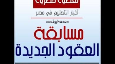 Photo of شوقي يكشف مصير مسابقة العقود المؤقتة 120 ألف معلم ( فيديو )