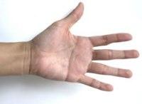 Left Hand Palm