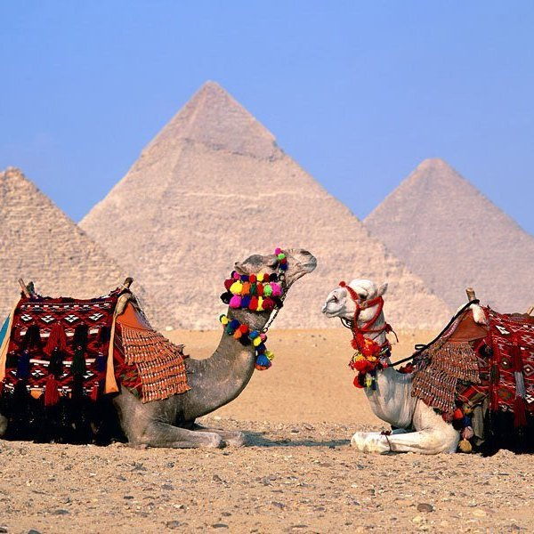 Cairo Private Transfers