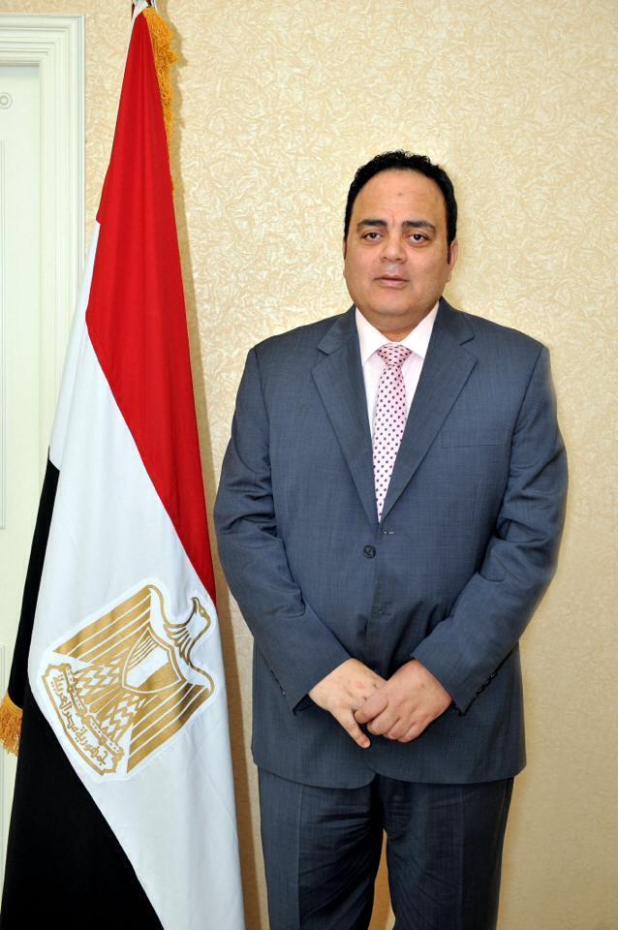 الاستاذ الدكتور/ عادل النويشى