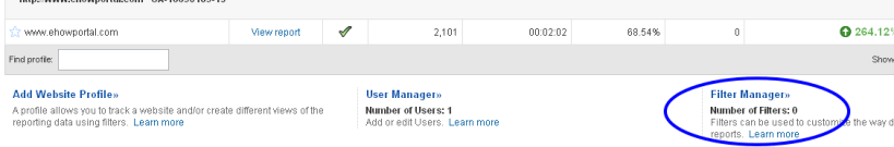 Google Analytics Filter Manager option