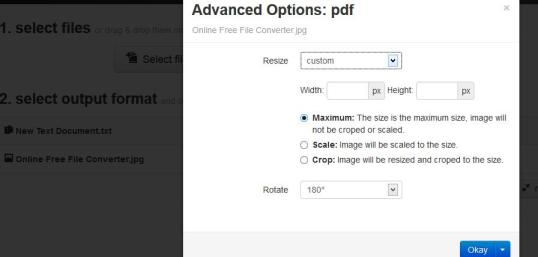 Advanced Option While Converting Files Online