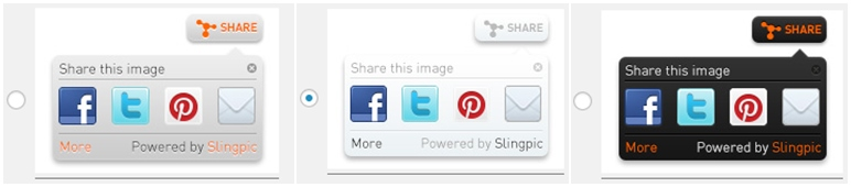 Social Share Buttons For Images - Slingpic Plugin