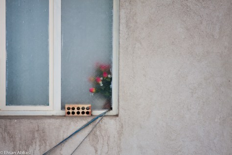 Wall, Window, Wires and Flowers