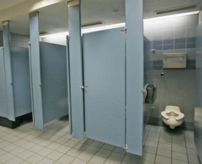 7459-bathroom-stall-partitions-can-come-in-a-large-variety-gracious-homes_665x415-425x344