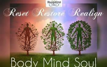 Ibogaine Detoxification Programs & Spiritual Journeys
